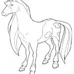 Horseland 8