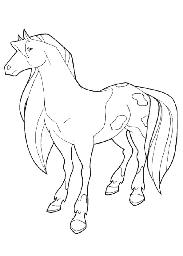Horseland 9 pferde ausmalen