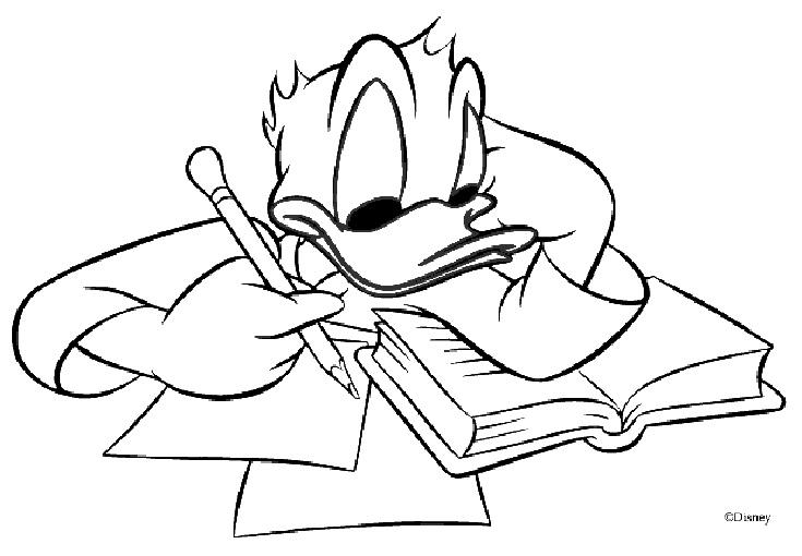 Donald studiert