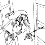 Spiderman 15