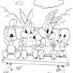 Looney Tunes 1