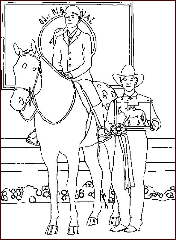 pferde mit reiter 1