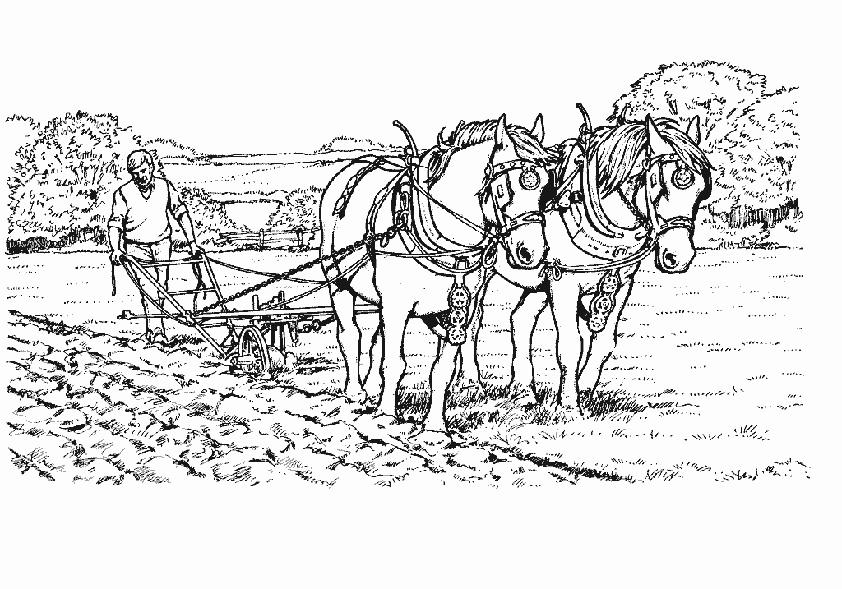 Arbeitspferden ausmalen