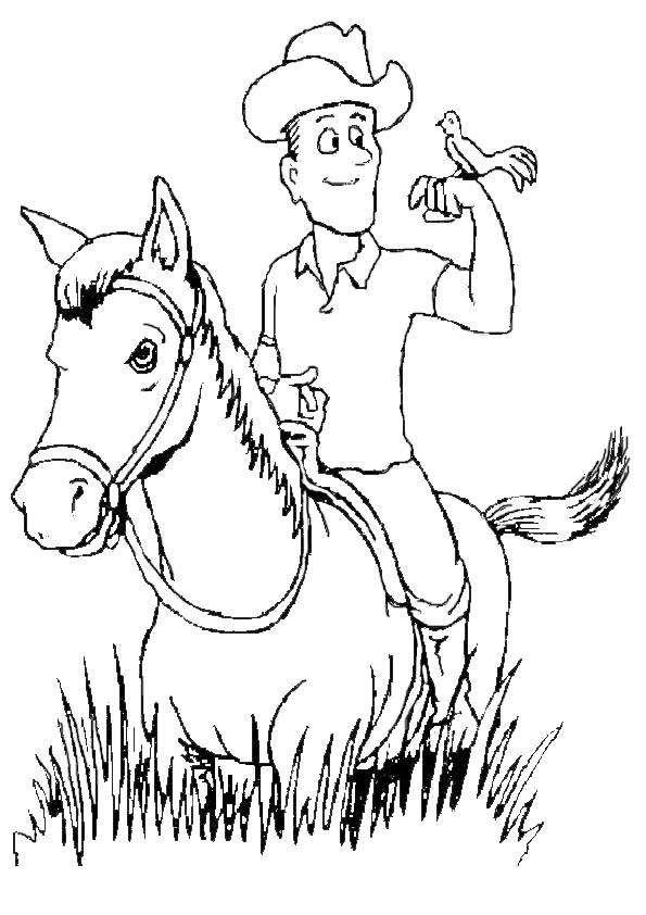 pferde mit reiter 2