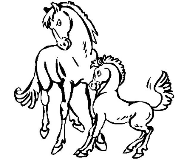 pferden ausmalen