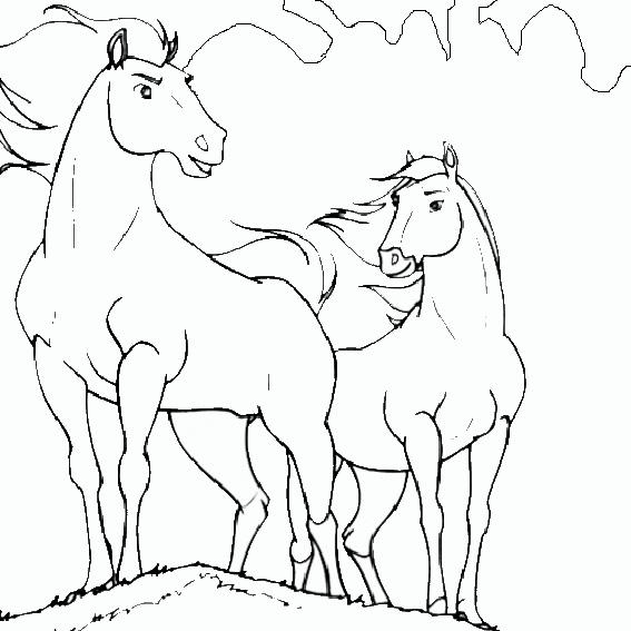 2 pferden ausmalen