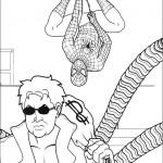 Spiderman 7