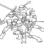 Ninja turtles-1
