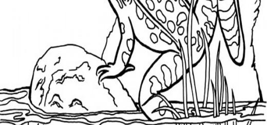 malvorlagen frosch -1