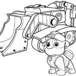 Paw patrol-19