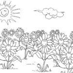 Blumen-5