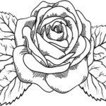 Blumen-3